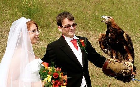 Natalie, Me and a Golden Eagle